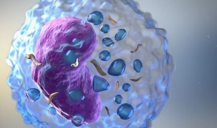 UAE becomes second country globally to approve new treatment for mantle cell lymphoma